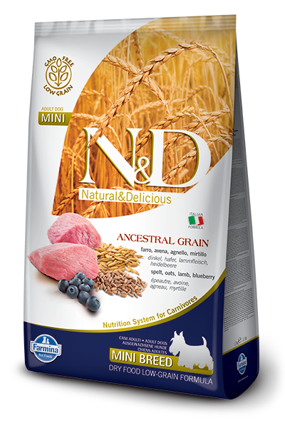 N&D LG DOG Adult Mini Lamb & Blueberry 800g